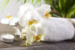 Orchids and towel on wooden boards Royalty Free Stock Images