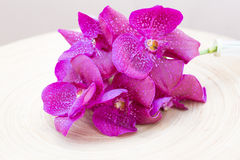Orchids vanda on wooden plate. Pink orchids vanda on wooden plate Royalty Free Stock Image