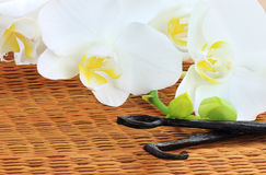 Orchids and Vanilla Beans. Beautiful white orchid lying beside of vanilla beans on a bamboo mat Stock Photography