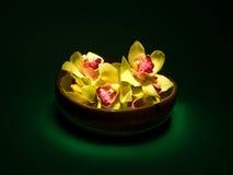 orchids vase Στοκ φωτογραφία με δικαίωμα ελεύθερης χρήσης