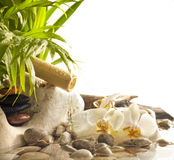 Orchids and zen stones with falling water Stock Images
