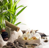Orchids and zen stones on water spa concept. On white background Stock Photo