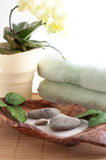 Orchied, massage stones, sand, Royalty Free Stock Photography