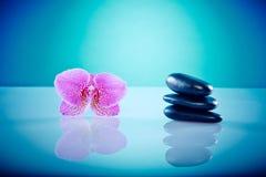 Orchis con las piedras calientes Imágenes de archivo libres de regalías