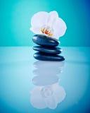 Orchis mit heißen Steinen Stockbild