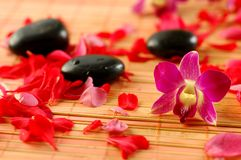 Orchis and therapy stones. Orchid, volcanic therapy stones and  flower petals on bamboo mat Royalty Free Stock Images