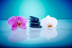 Orchis z gorącymi kamieniami Obrazy Royalty Free