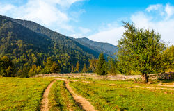 Free Orchrd Behind The Fence In Mountains Royalty Free Stock Image - 90366956
