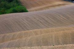 orcia Тоскана ландшафта d val Стоковая Фотография