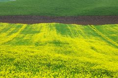 orcia Тоскана ландшафта d val Стоковые Изображения RF