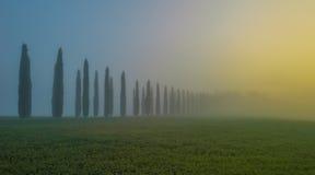 Orcia dal i den dimmiga morgonen, Tuscany, Italien royaltyfri bild