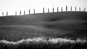 ` Orcia de Val d em Toscânia, Itália Imagem de Stock