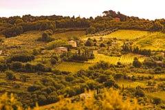 ` Orcia de Val d, Toscânia, Itália Imagem de Stock Royalty Free