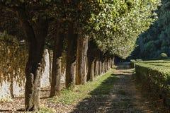 ` ORCIA, ITALIA di SAN QUIRICO D - 30 ottobre 2016 - vista del Orti Leonini nel ` Orcia, ` Orcia di San Quirico d di Val d Fotografia Stock Libera da Diritti