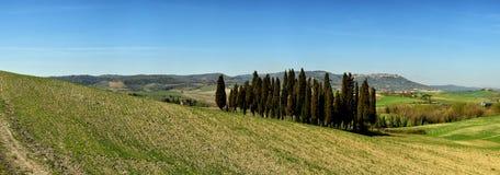 ` ORCIA, TOSCANA/ITALIA DI SAN QUIRICO D - 31 MARZO 2017: bello paesaggio toscano vicino al ` Orcia di San Quirico d, con Rolling Fotografia Stock Libera da Diritti