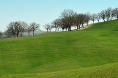 ` ORCIA, TOSCANA/ITALIA DI SAN QUIRICO D - 31 MARZO 2017: paesaggio toscano tipico vicino al ` Orcia di San Quirico d, con Rollin Fotografie Stock