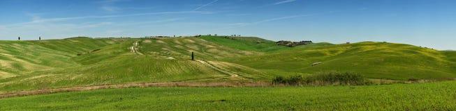 ` ORCIA, TOSCANE/ITALIE DE SAN QUIRICO D - 31 MARS 2017 : Vue de panorama des collines vertes dans l'orcia val de ` du ` d, près  Image libre de droits