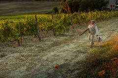 ` ORCIA, TUSCANY/ITALY de VAL D 8 de octubre - viñedo en el ` Orcia de Val d Foto de archivo