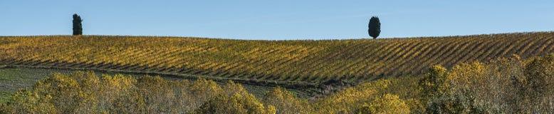 ` ORCIA, TUSCANY-ITALY VAL D, AM 30. OKTOBER 2016: Szenische Toskana-Landschaft mit Rolling Hills und Tälern im Herbst Stockbild