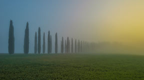 Orcia valley in the misty morning, Tuscany, Italy Royalty Free Stock Image