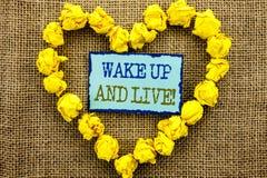 Ord handstil, levande textvak som är övre och Affärsidé för den Motivational framgångdrömmen Live Life Challenge som är skriftlig Royaltyfria Bilder