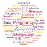 Ordbubbla för havandeskap Fotografering för Bildbyråer
