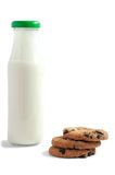 Ordeñe en botella con las galletas de microprocesador de chocolate en un fondo blanco Foto de archivo libre de regalías