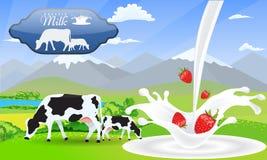 Ordeñe la fresa del chapoteo y los campos hermosos de la montaña y del prado del paisaje de la naturaleza con las vacas stock de ilustración