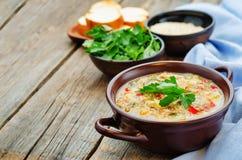 Ordeñe la sopa con las patatas, la quinoa y pimientas imagen de archivo libre de regalías