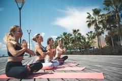 Ordelijke vrouwen die yoga op matten uitoefenen royalty-vrije stock afbeeldingen