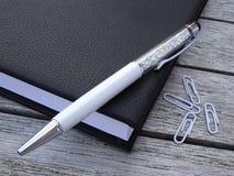 Orden del día, pluma de la aguja y paperclips Imagen de archivo libre de regalías