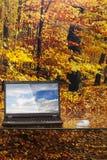 Ordenador ecológico Fotos de archivo