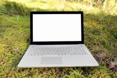 Ordenador portátil con la pantalla en blanco en el musgo en el bosque Fotografía de archivo