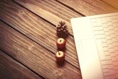 Ordenador portátil y manzanas con los conos del pino Imagen de archivo