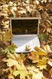 Ordenador y manzana Foto de archivo