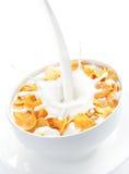 Ordenhe o derramamento em uma bacia de flocos de milho Imagem de Stock