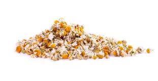 Ordentlicher Haufen der chamomille Blumen lizenzfreie stockbilder