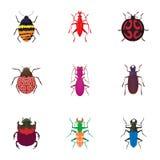 Order coleoptera icons set, cartoon style Royalty Free Stock Photography