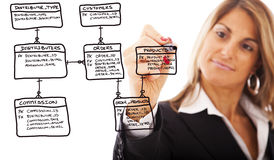 Order database schema. Businesswoman drawing a Order Database flowchart in a whiteboard Royalty Free Stock Images