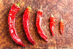 Ordered red chili peppers Stock Photo
