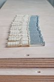 Ordered series of screws and plugs on plywood Stock Images