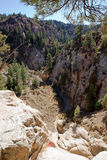 Orderville Canyon from Above Stock Photos