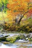 Ordesa. Arazas river in Ordesa National Park, Pyrenees, Huesca, Aragon, Spain Royalty Free Stock Image