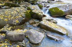 Ordesa. Arazas river in Ordesa National Park, Pyrenees, Huesca, Aragon, Spain Stock Photo