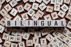 Ordet av tvåspråkiga personen på begrepp för byggnadskvarter royaltyfri bild