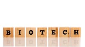 Ordet - Biotech - i alfabetbokstäver på en rad av träblocket Royaltyfri Bild