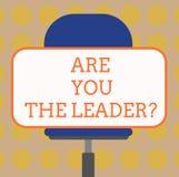 Ordhandstiltext är dig Leaderquestionen Affärsidé för ledarskap som visar ta omsorg av företagsmellanrumet vektor illustrationer