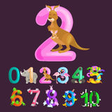 Ordinal number 2 for teaching children counting two kangaroo Mom and baby in bag with the ability to calculate amount Stock Image