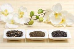 Ordinamenti di tè verde Fotografie Stock Libere da Diritti