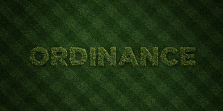 ORDINANCE - fresh Grass letters with flowers and dandelions - 3D rendered royalty free stock image Stock Photo